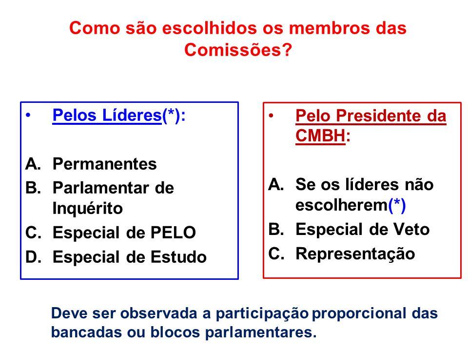 Como são escolhidos os membros das Comissões