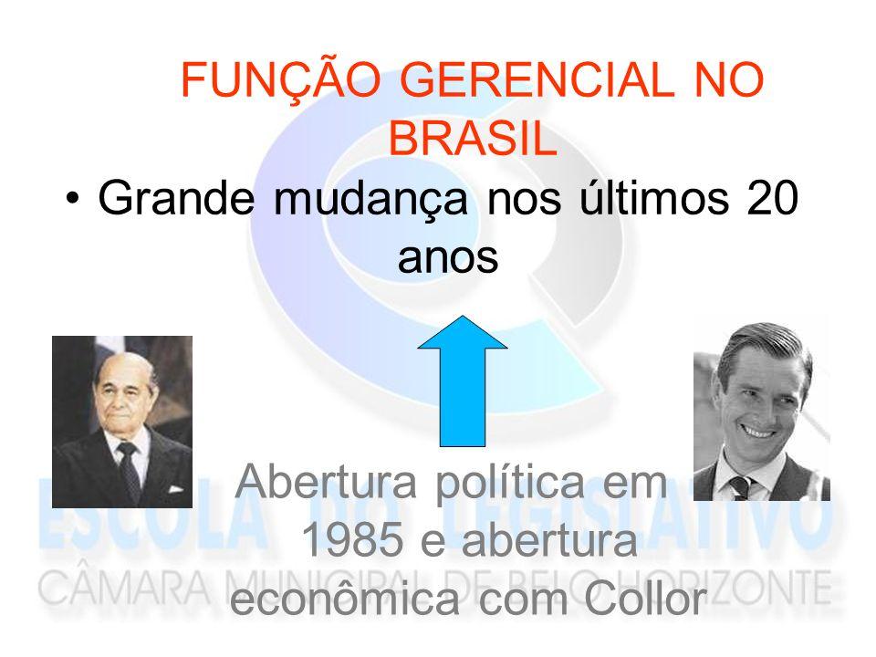 FUNÇÃO GERENCIAL NO BRASIL
