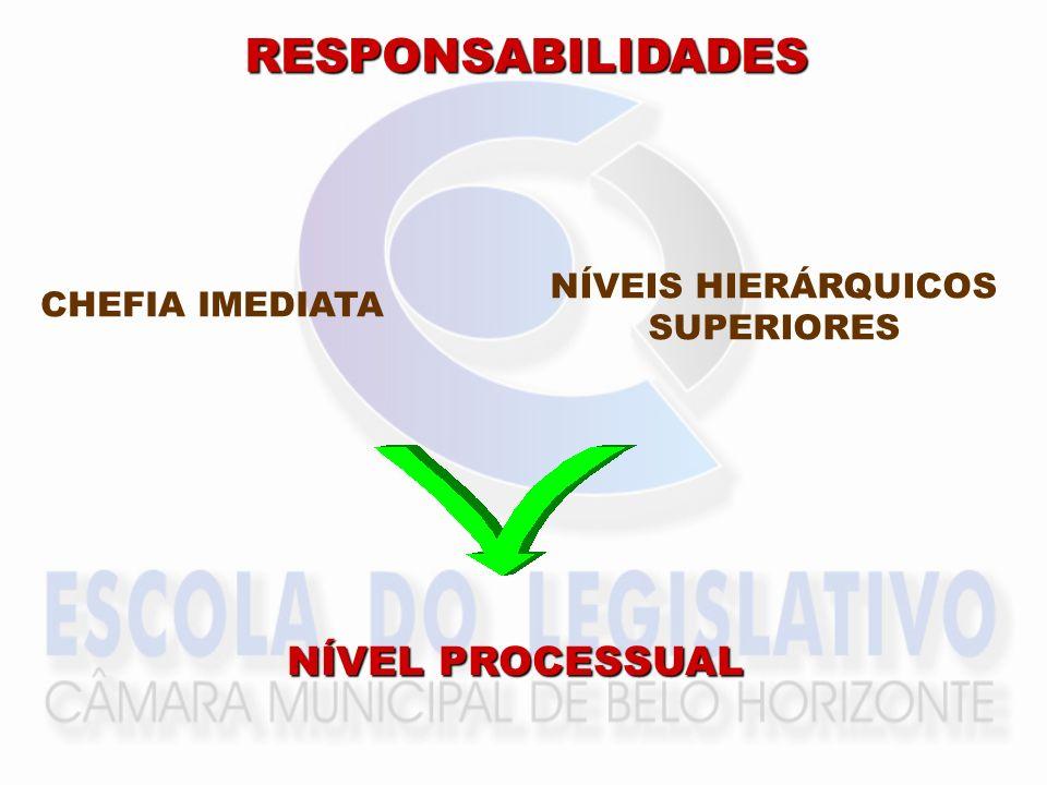 RESPONSABILIDADES NÍVEL PROCESSUAL NÍVEIS HIERÁRQUICOS CHEFIA IMEDIATA