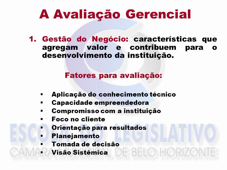 A Avaliação GerencialGestão do Negócio: características que agregam valor e contribuem para o desenvolvimento da instituição.