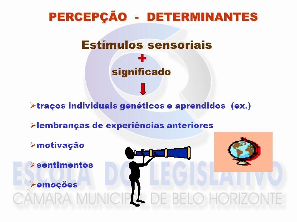 + PERCEPÇÃO - DETERMINANTES Estímulos sensoriais significado