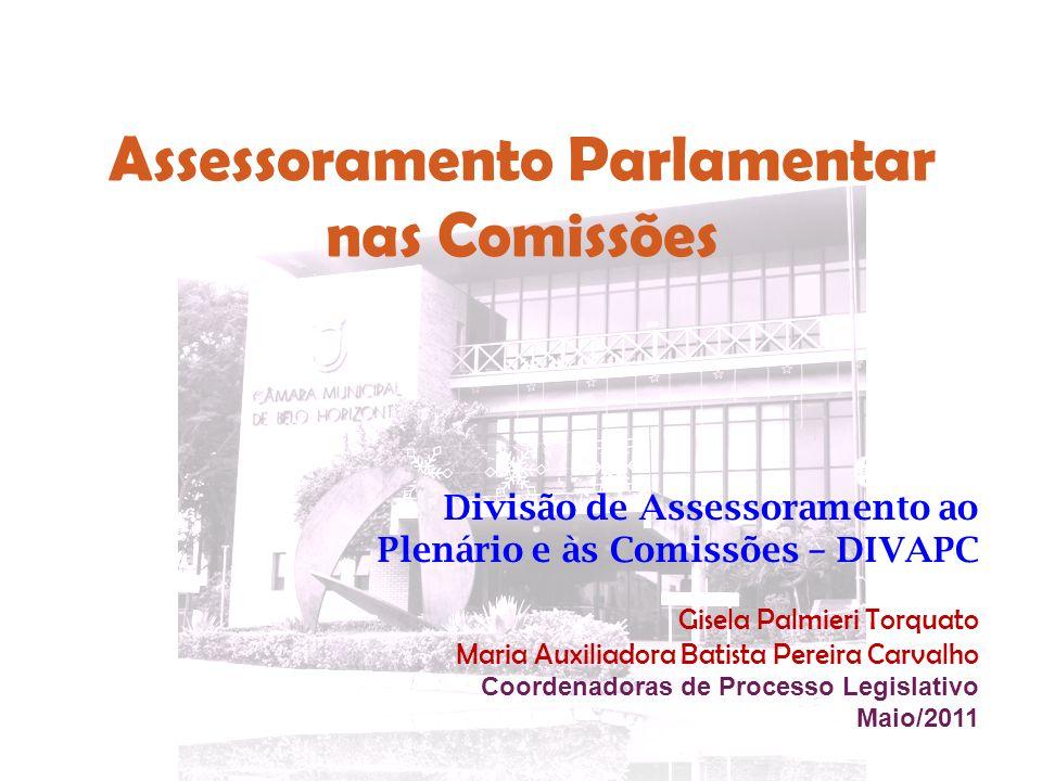 Assessoramento Parlamentar nas Comissões
