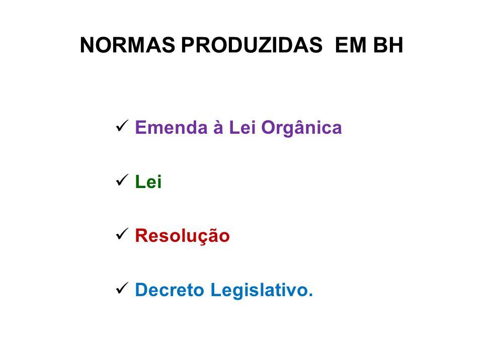 NORMAS PRODUZIDAS EM BH