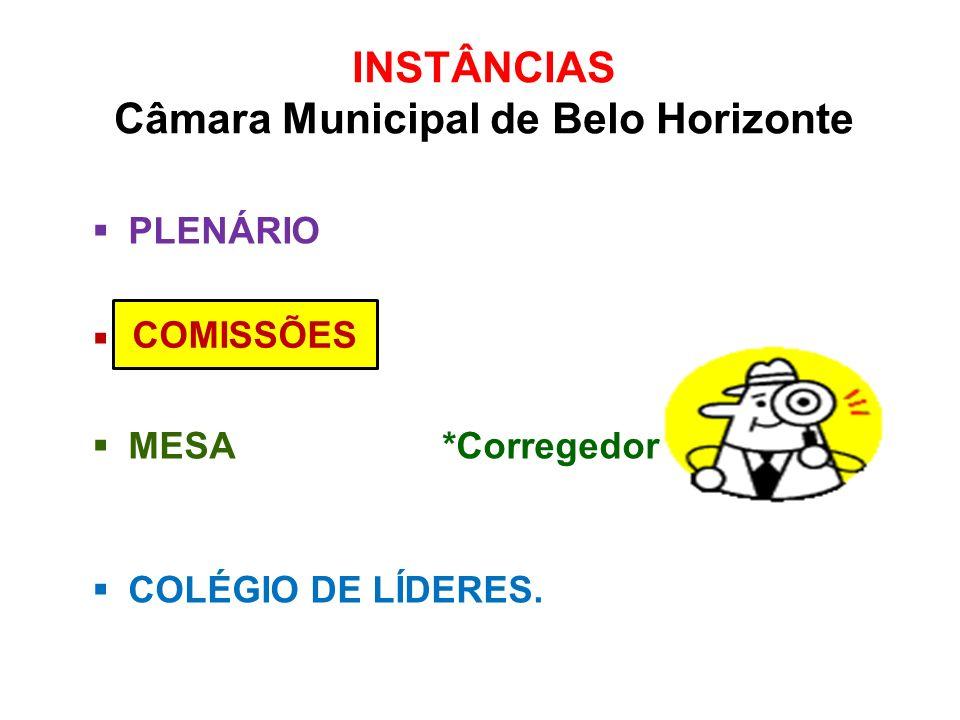 INSTÂNCIAS Câmara Municipal de Belo Horizonte