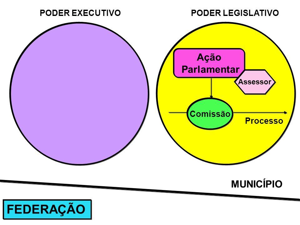FEDERAÇÃO Ação Parlamentar MUNICÍPIO PODER EXECUTIVO PODER LEGISLATIVO