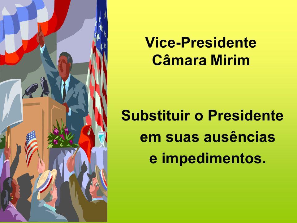 Vice-Presidente Câmara Mirim