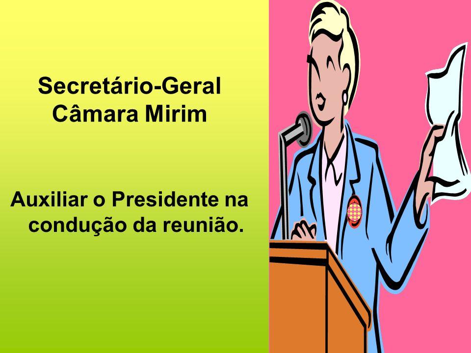 Secretário-Geral Câmara Mirim