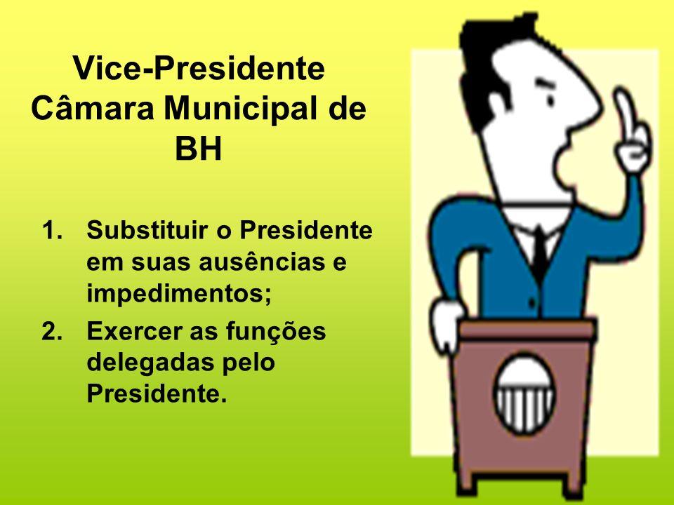Vice-Presidente Câmara Municipal de BH
