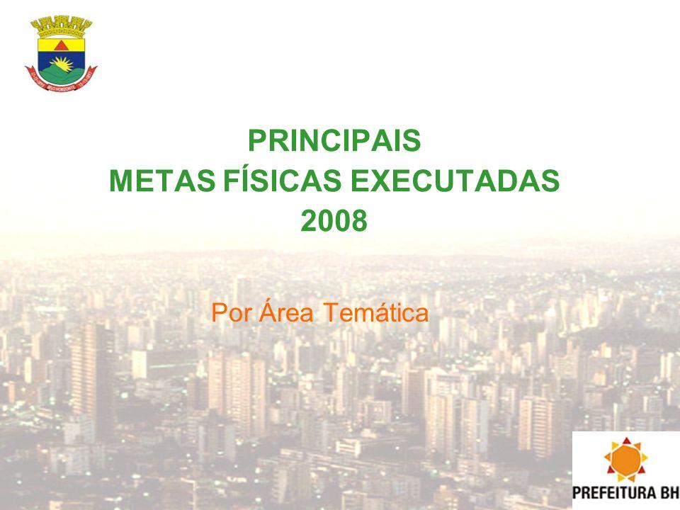 PRINCIPAIS METAS FÍSICAS EXECUTADAS 2008