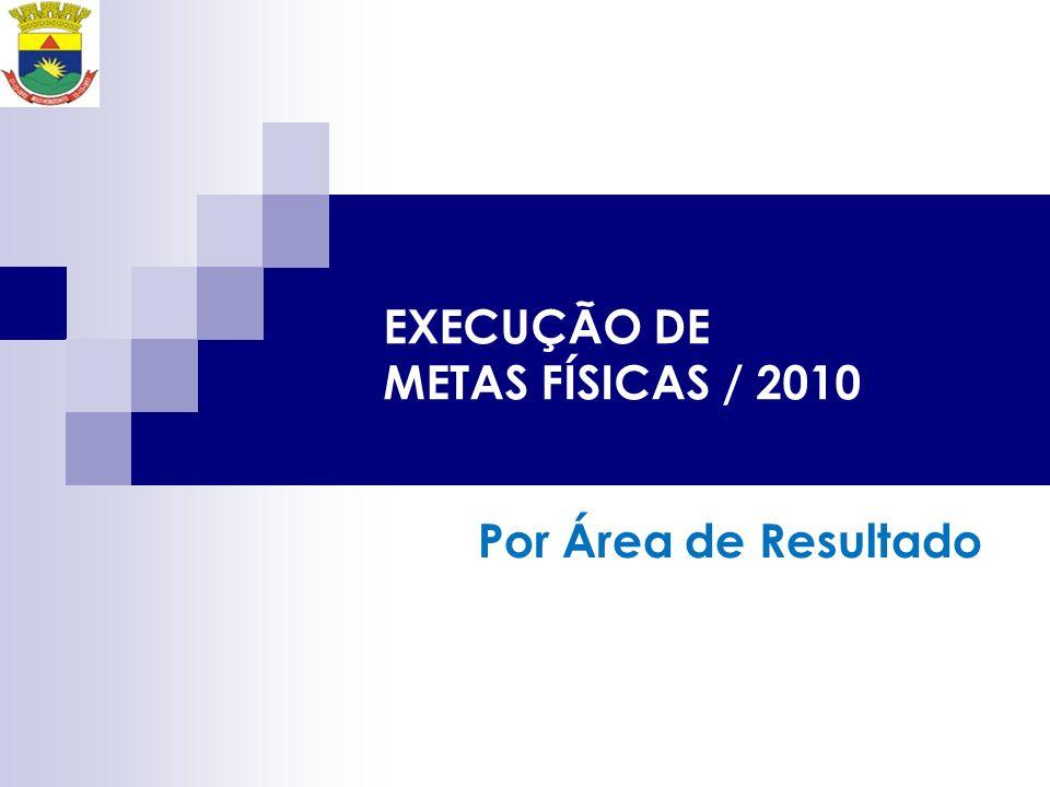 EXECUÇÃO DE METAS FÍSICAS / 2010