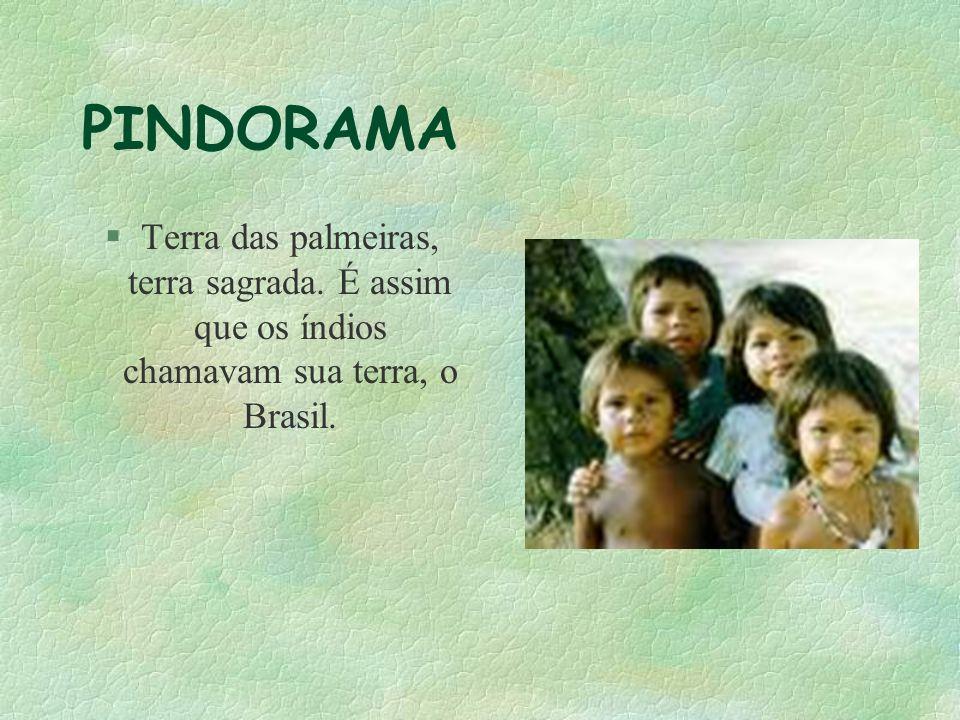 PINDORAMA Terra das palmeiras, terra sagrada. É assim que os índios chamavam sua terra, o Brasil.