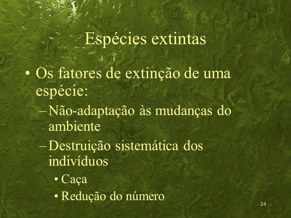 Espécies extintas Os fatores de extinção de uma espécie: