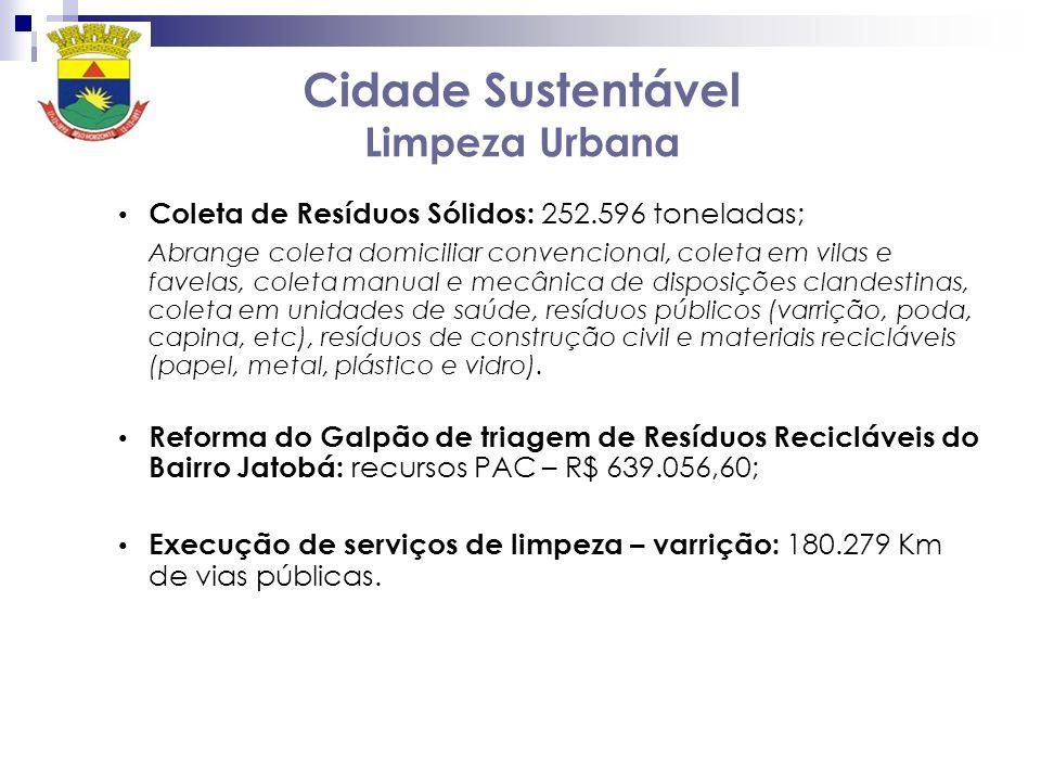 Cidade Sustentável Limpeza Urbana