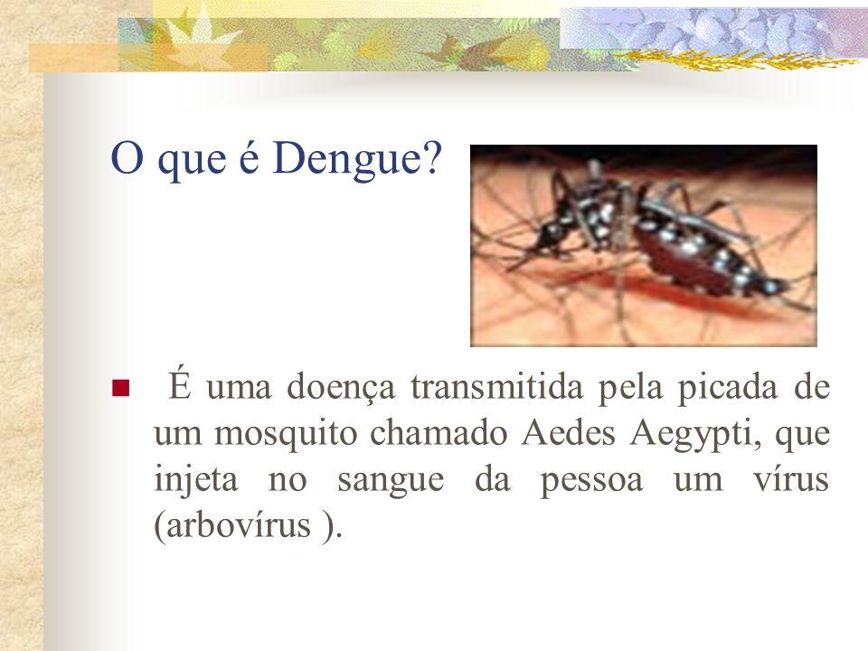 O que é Dengue.