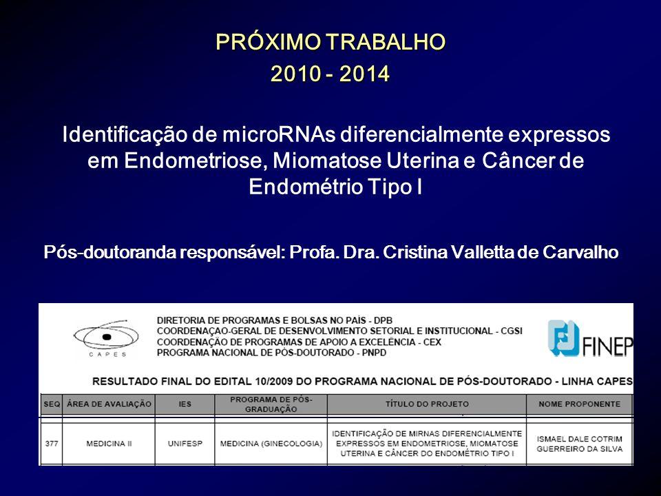 Pós-doutoranda responsável: Profa. Dra. Cristina Valletta de Carvalho