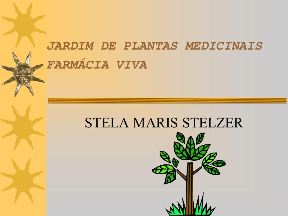 JARDIM DE PLANTAS MEDICINAIS FARMÁCIA VIVA
