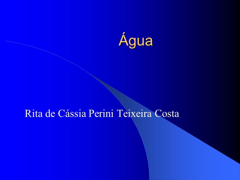 Rita de Cássia Perini Teixeira Costa