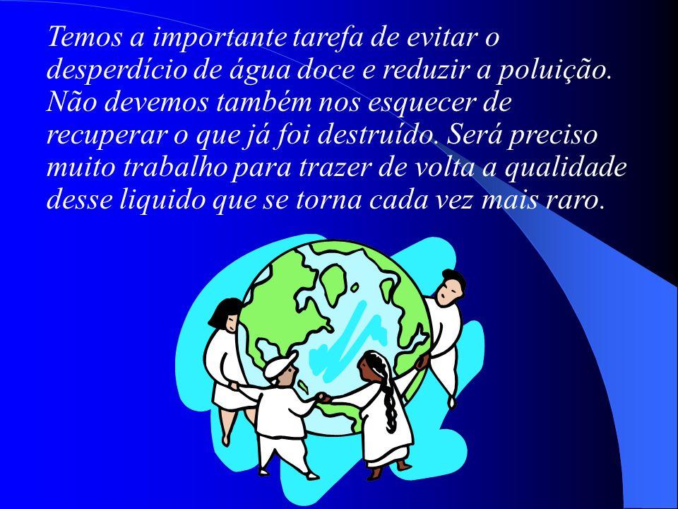 Temos a importante tarefa de evitar o desperdício de água doce e reduzir a poluição.