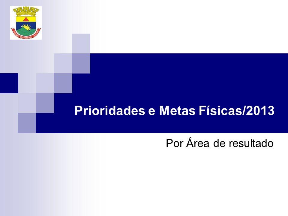 Prioridades e Metas Físicas/2013