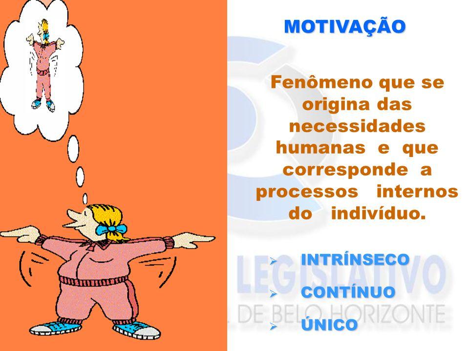 MOTIVAÇÃO Fenômeno que se origina das necessidades humanas e que corresponde a processos internos do indivíduo.