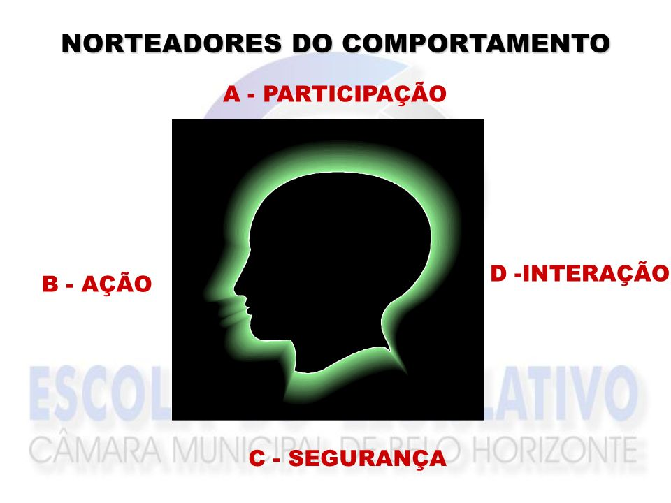 NORTEADORES DO COMPORTAMENTO