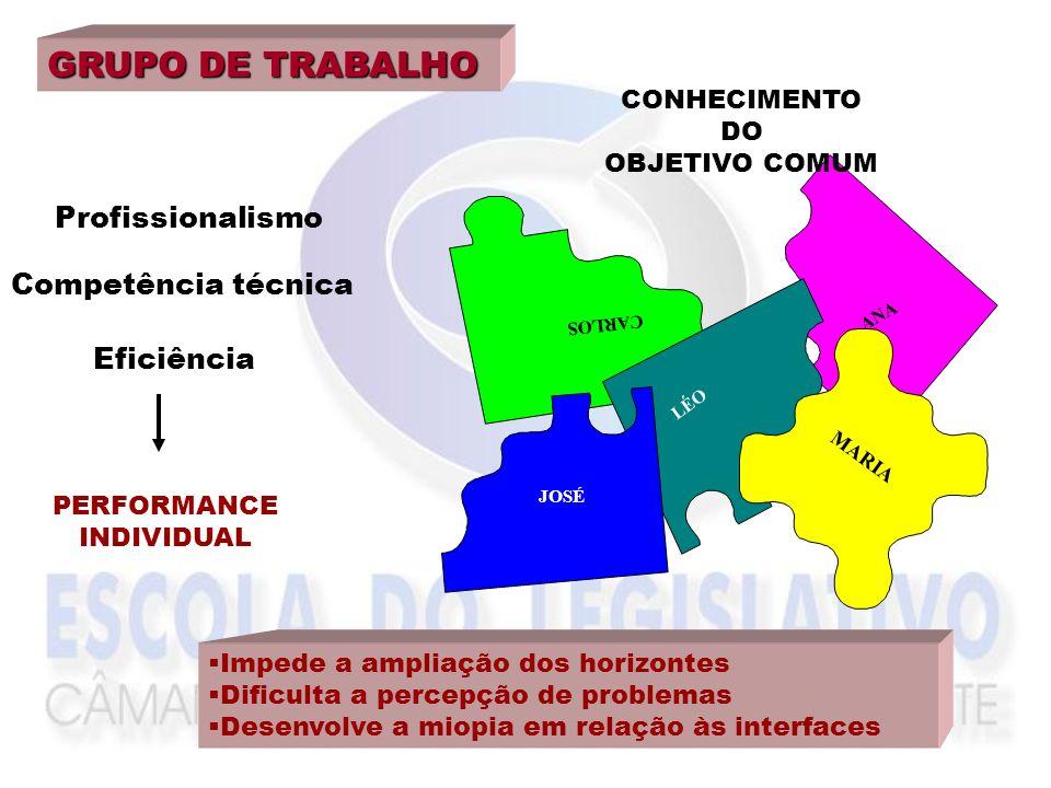GRUPO DE TRABALHO Profissionalismo Competência técnica Eficiência