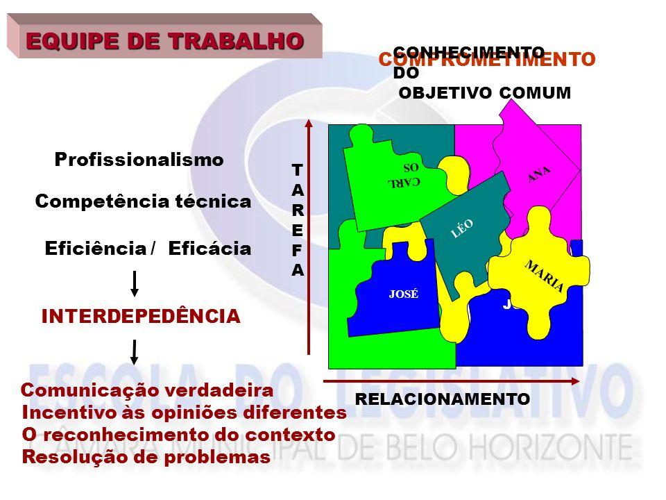 EQUIPE DE TRABALHO COMPROMETIMENTO COM O OBJETIVO Profissionalismo