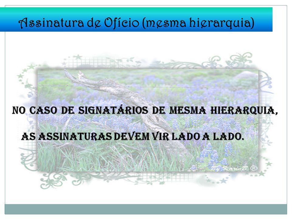 Assinatura de Ofício (mesma hierarquia)