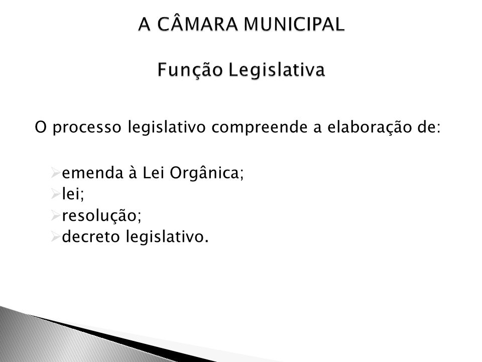 A CÂMARA MUNICIPAL Função Legislativa