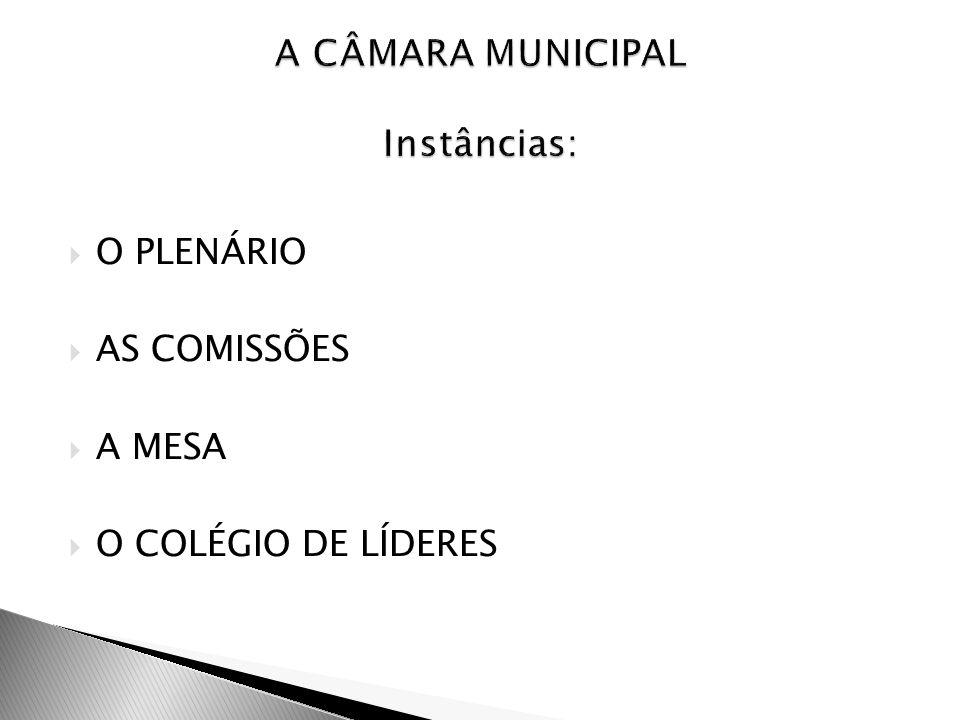 A CÂMARA MUNICIPAL Instâncias: