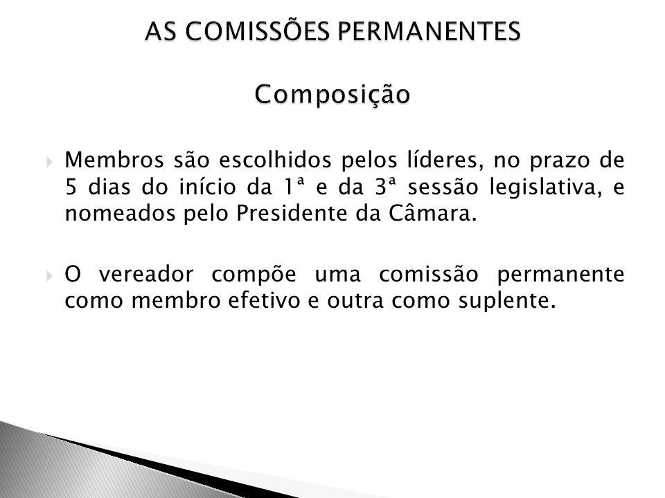 AS COMISSÕES PERMANENTES Composição