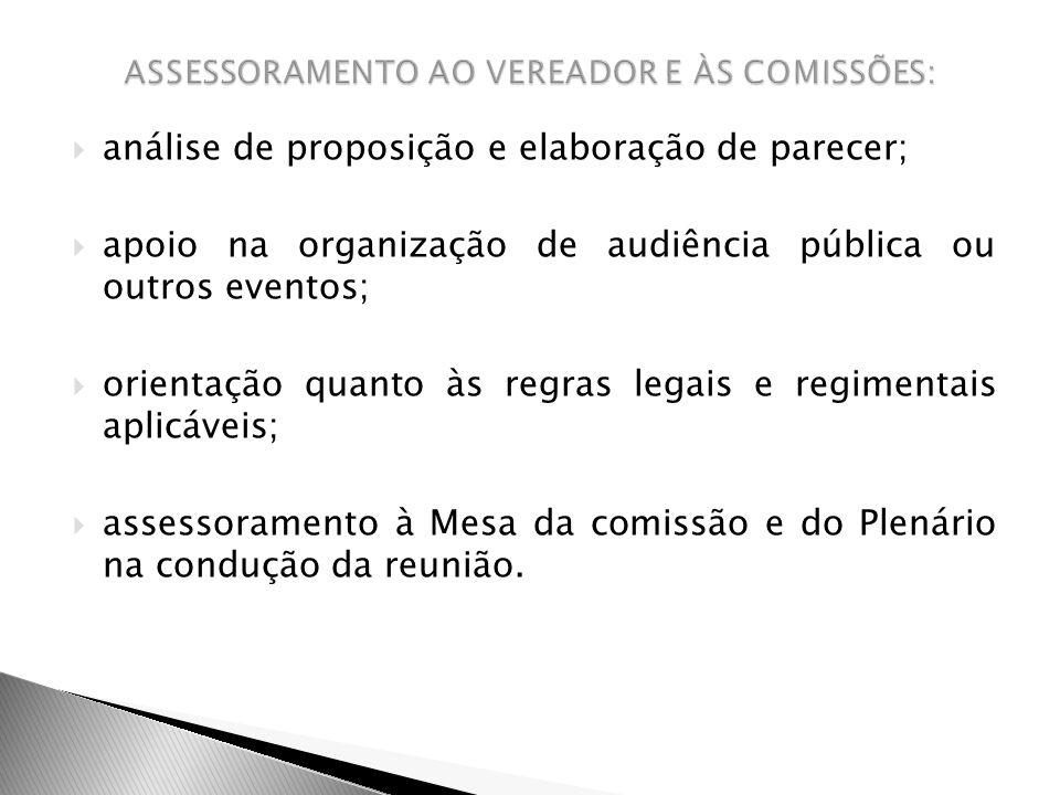 ASSESSORAMENTO AO VEREADOR E ÀS COMISSÕES: