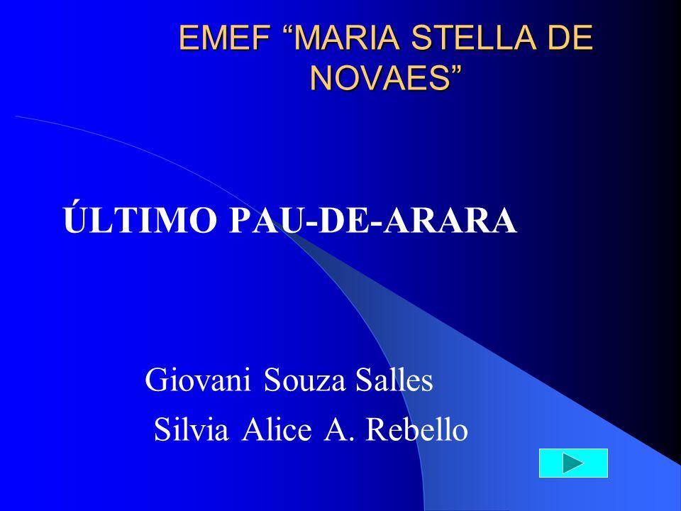 EMEF MARIA STELLA DE NOVAES