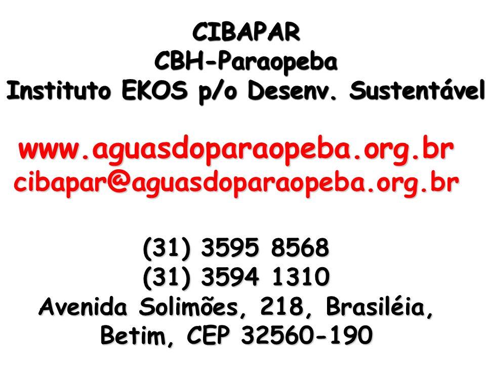 Instituto EKOS p/o Desenv. Sustentável