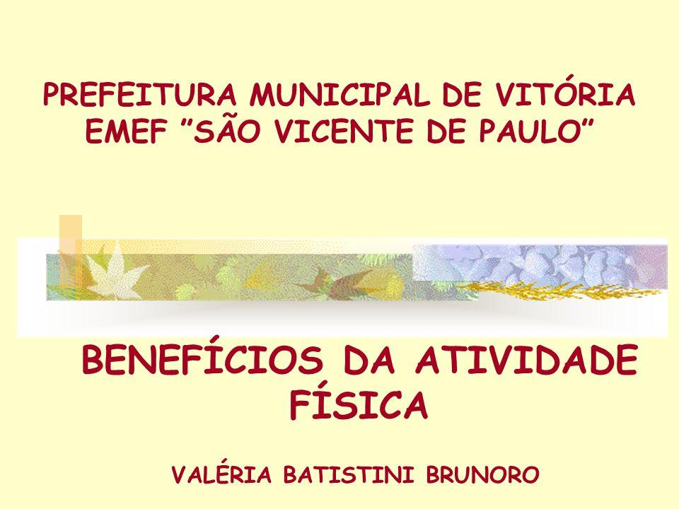 PREFEITURA MUNICIPAL DE VITÓRIA EMEF SÃO VICENTE DE PAULO