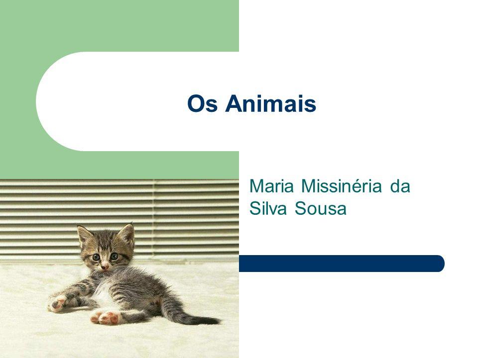 Maria Missinéria da Silva Sousa