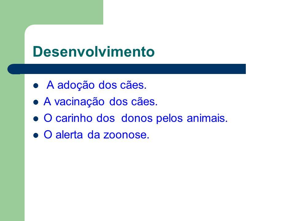 Desenvolvimento A adoção dos cães. A vacinação dos cães.