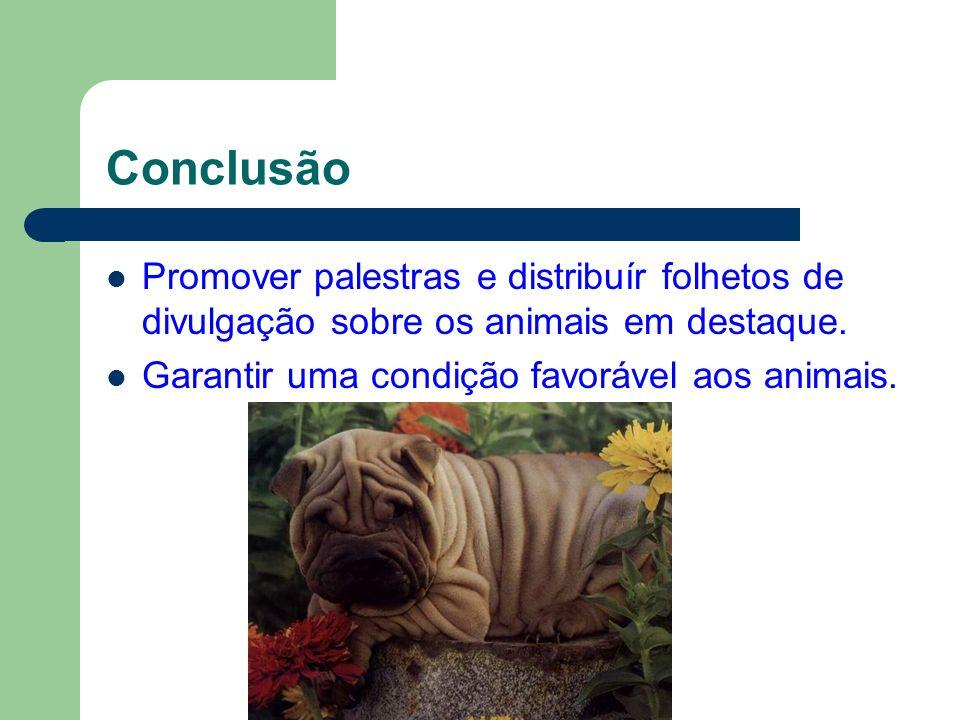 Conclusão Promover palestras e distribuír folhetos de divulgação sobre os animais em destaque.