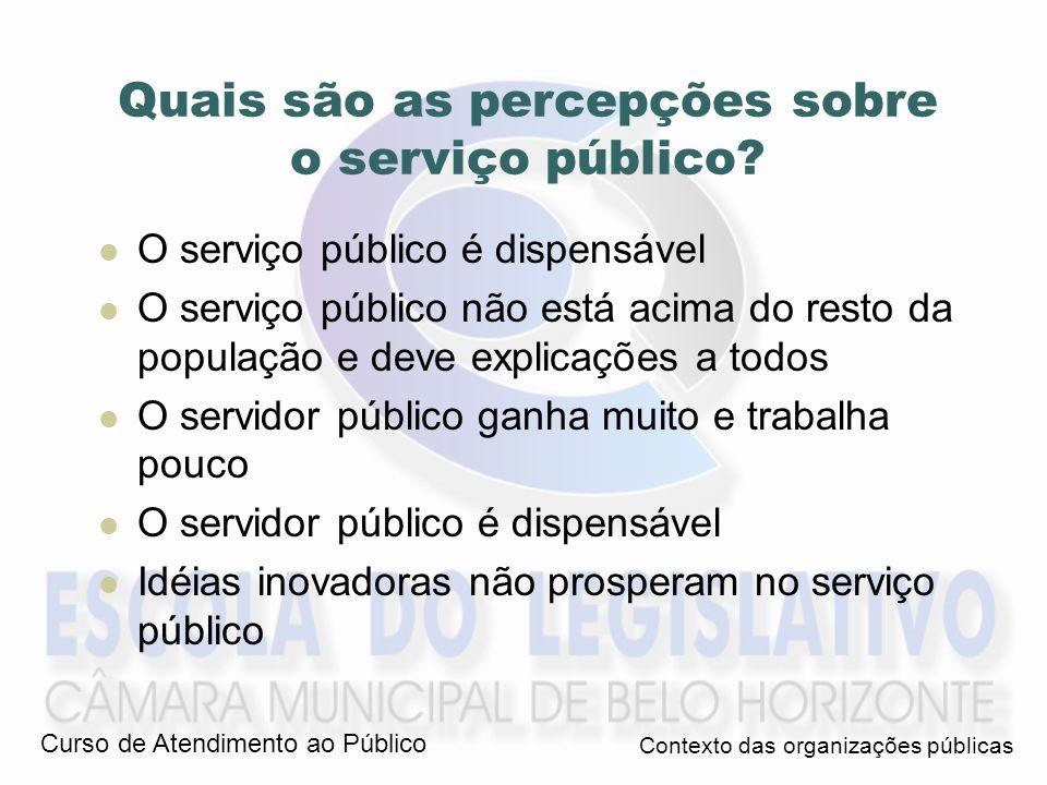 Quais são as percepções sobre o serviço público