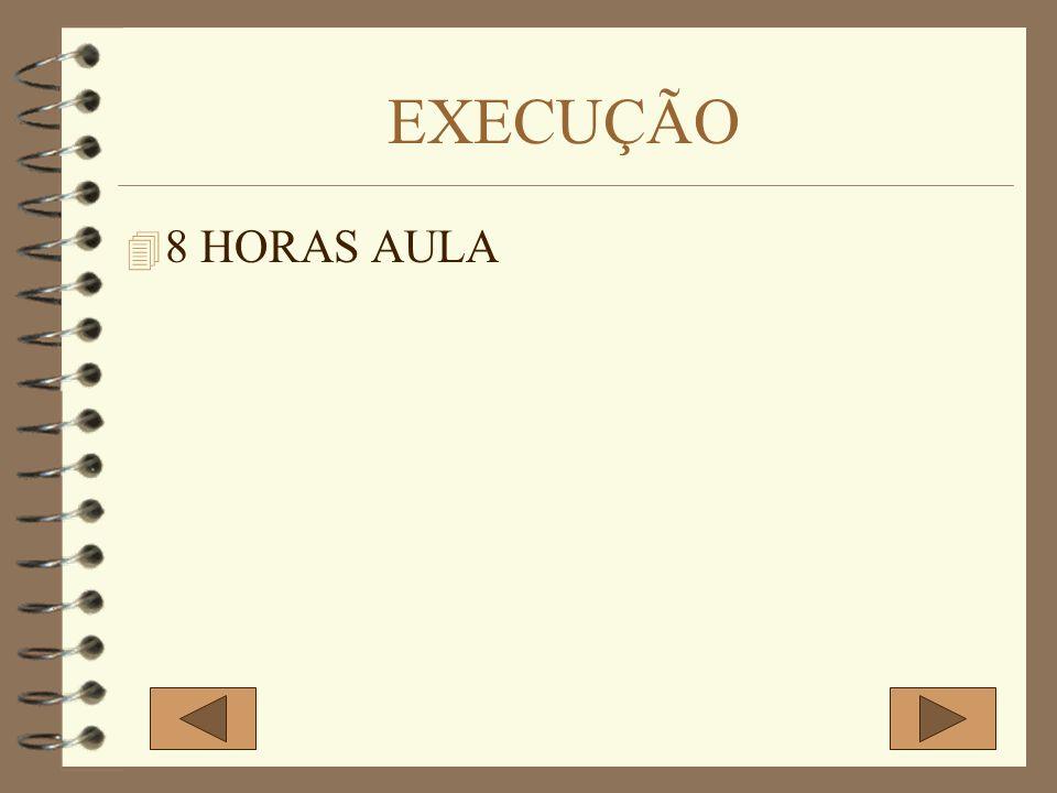 EXECUÇÃO 8 HORAS AULA
