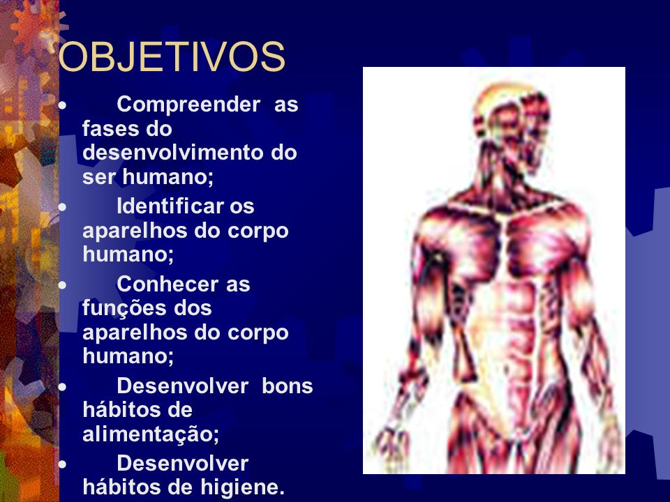 OBJETIVOS · Compreender as fases do desenvolvimento do ser humano;