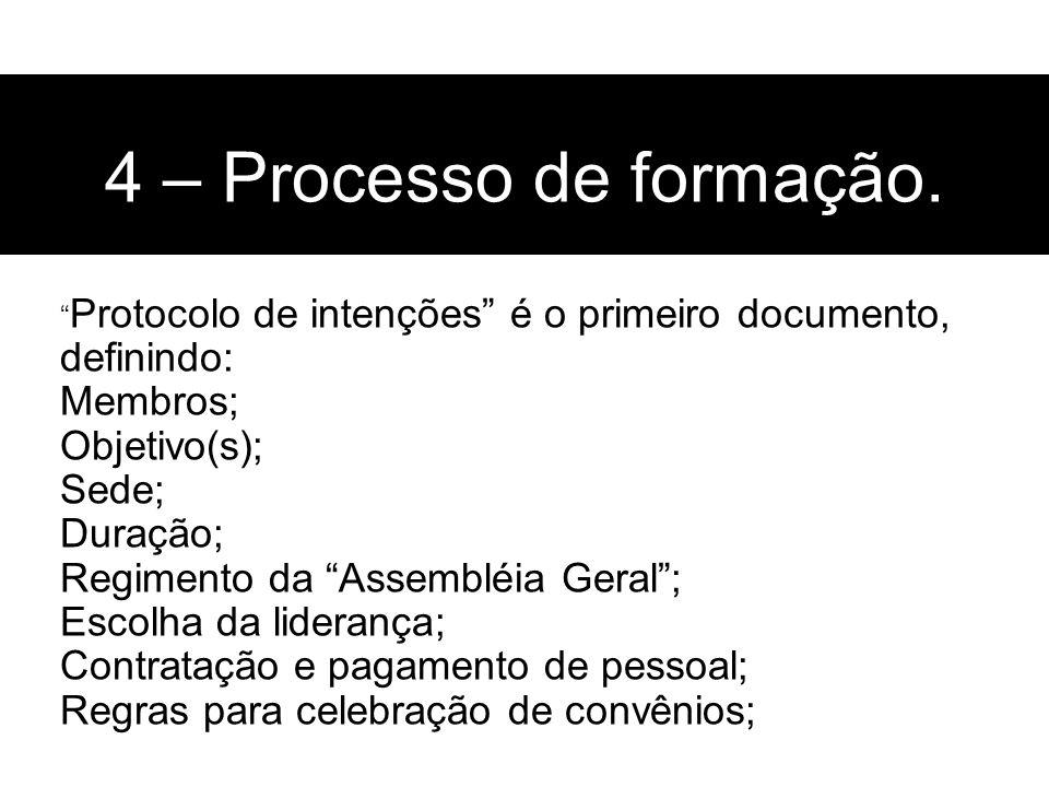 4 – Processo de formação. Membros; Objetivo(s); Sede; Duração;