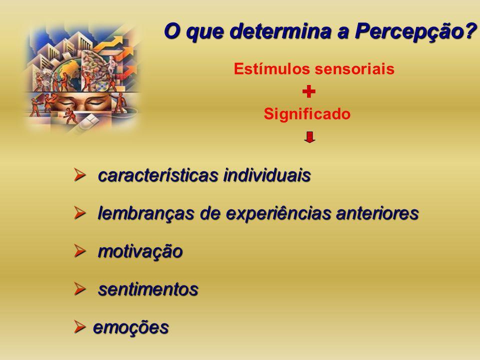 + O que determina a Percepção características individuais