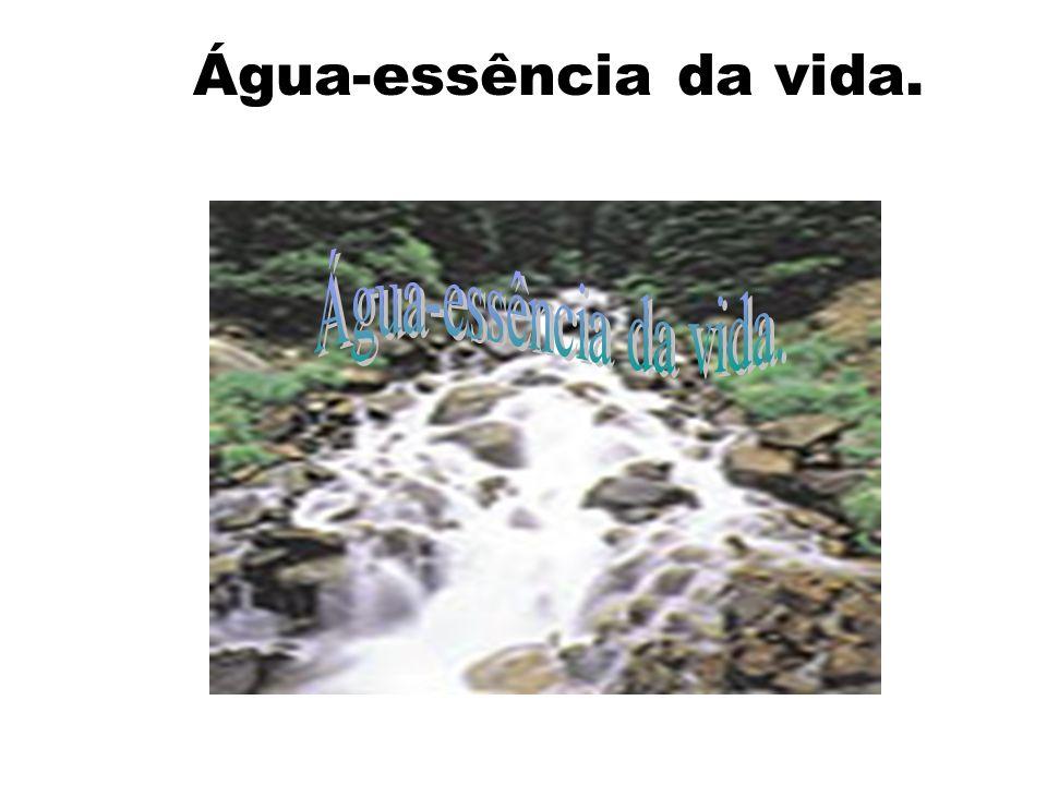 Água-essência da vida. Água-essência da vida.