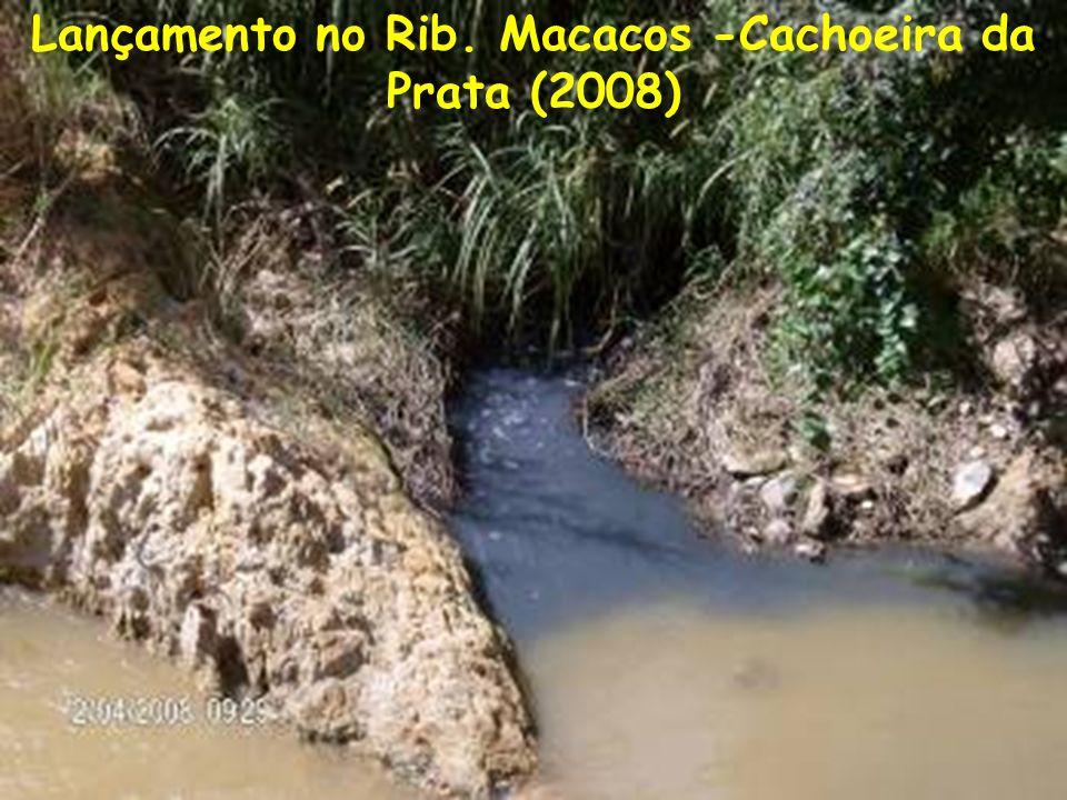 Lançamento no Rib. Macacos -Cachoeira da Prata (2008)