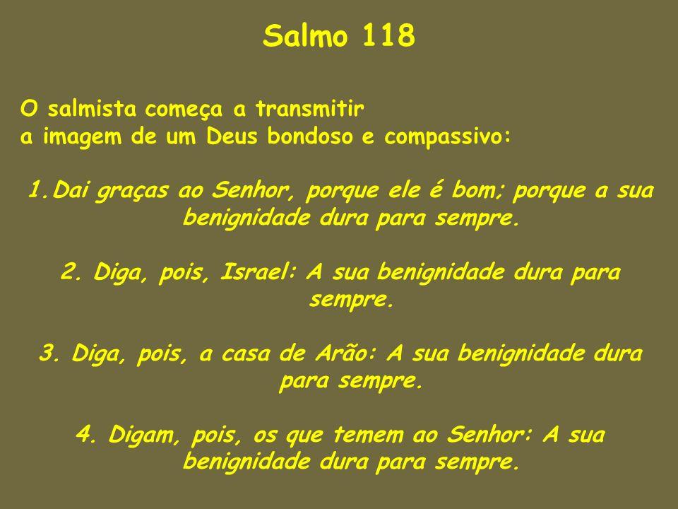Salmo 118 O salmista começa a transmitir