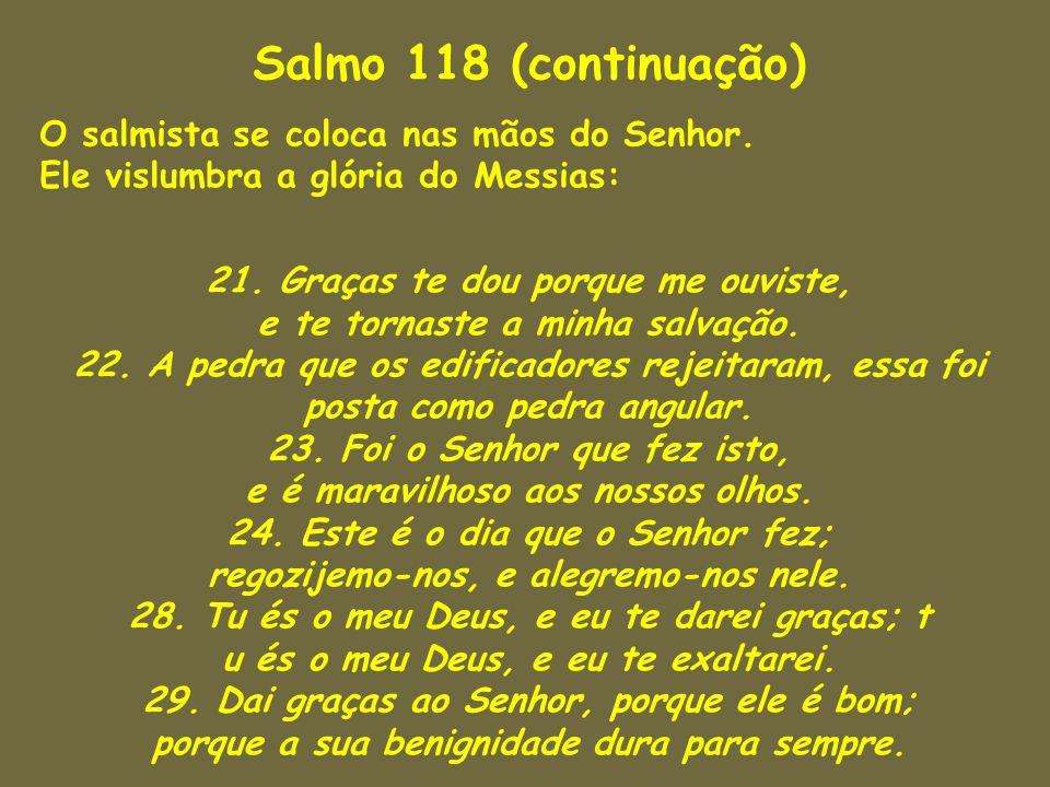 Salmo 118 (continuação) O salmista se coloca nas mãos do Senhor. Ele vislumbra a glória do Messias:
