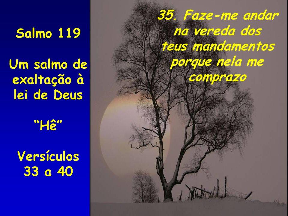 35. Faze-me andar na vereda dos. teus mandamentos. porque nela me. comprazo. Salmo 119. Um salmo de.