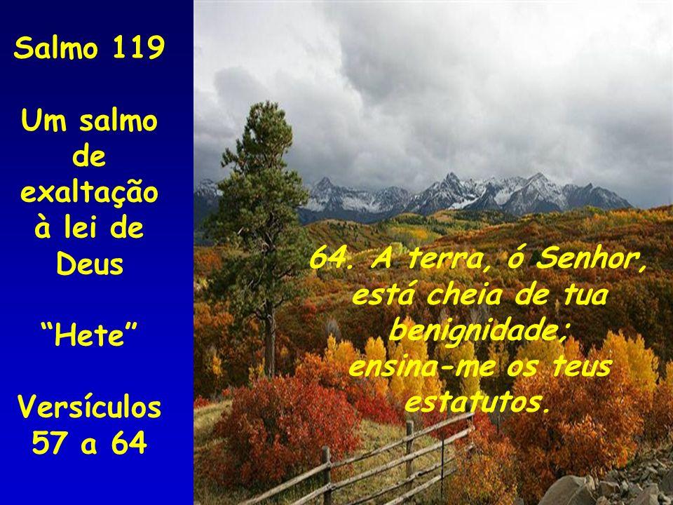 Salmo 119 Um salmo de. exaltação à lei de Deus. Hete Versículos 57 a 64. 64. A terra, ó Senhor,
