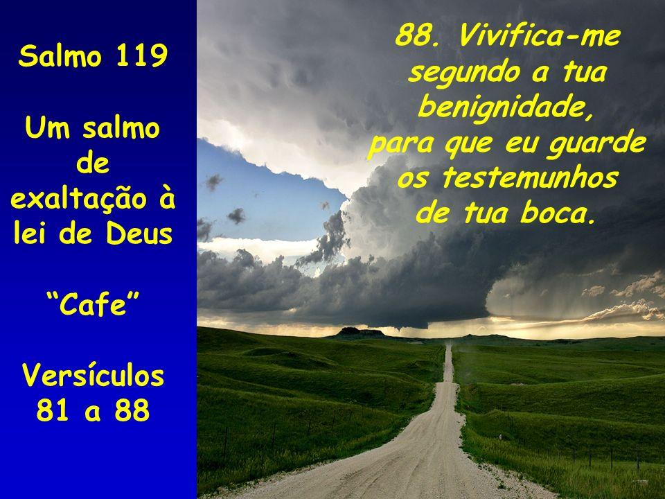 88. Vivifica-me segundo a tua. benignidade, para que eu guarde. os testemunhos. de tua boca. Salmo 119.